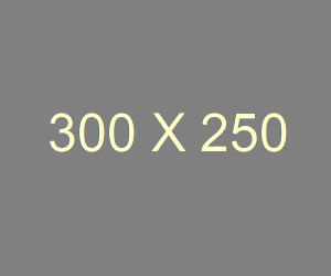 300_250